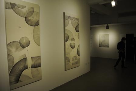 Dual Exhibition Nguyen Son and Richard Streitmatter_5583_C