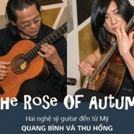 The Rose of autumn