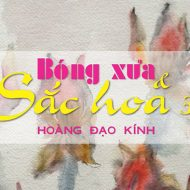 feature-bong-xua-sac-hoa