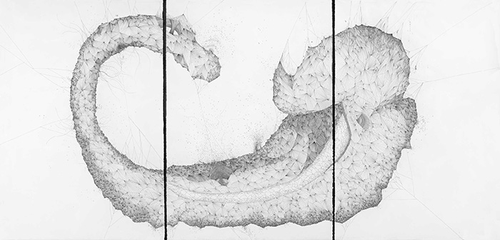 Hippocampus, 112*228 cm, China ink on paper (photo from the artist's website)